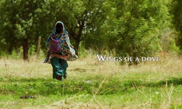 """Watch the first trailer for Omoni Oboli's """"Wings of a Dove"""""""