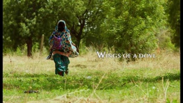 "Watch the first trailer for Omoni Oboli's ""Wings of a Dove"""